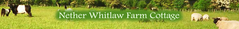 Self Catering Holiday Cottage in the Scottish Borders at Nether Whitlaw Farm